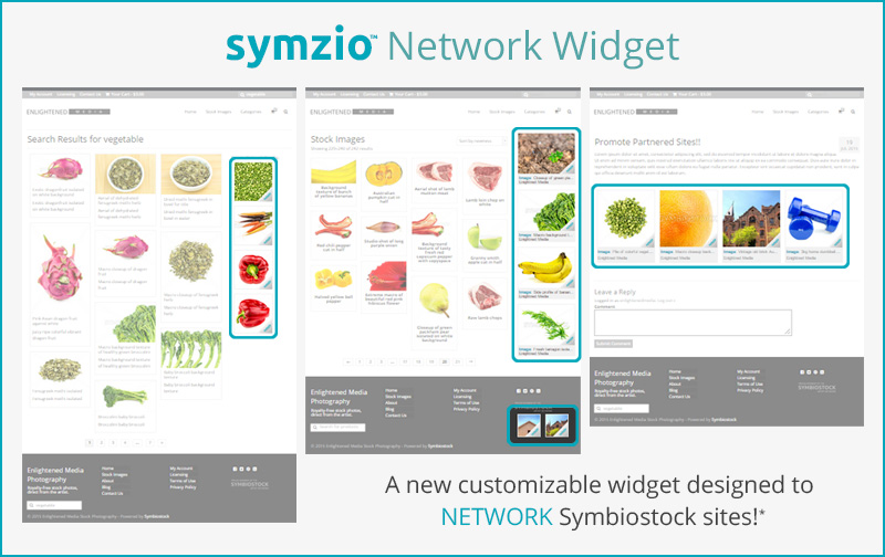 Symzio-widget-preview
